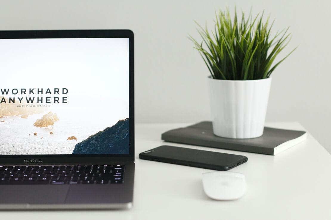 cómo hacer tu web más ecológica: imagen de ordenador y maceta